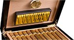 Which humidor is recommended for beginners?